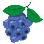 sigaisen_blueberry